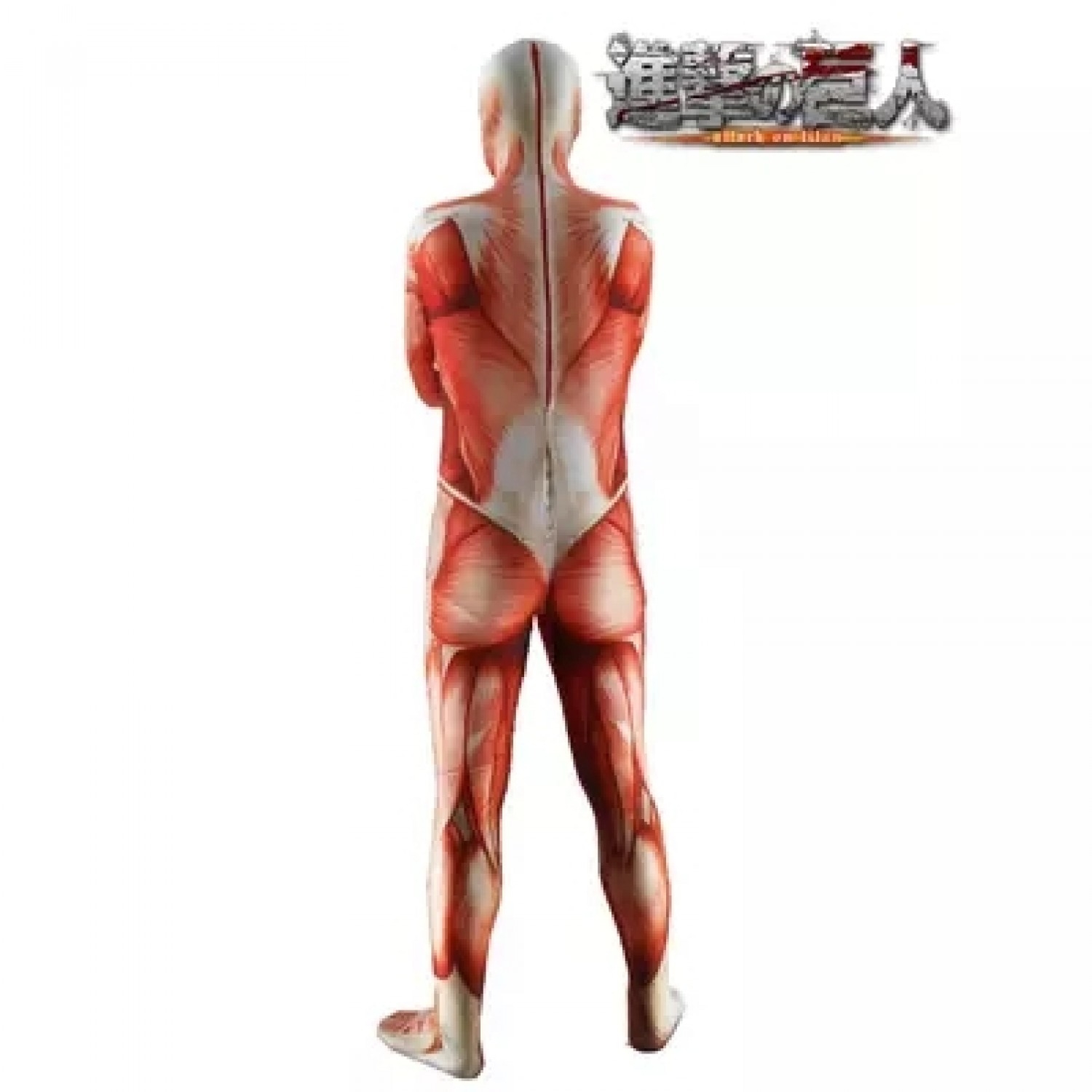 Attack on Titan Muscle giant Tights
