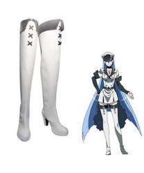Akame ga Kill! Esdeath Cosplay Boots Cosplay Shoes