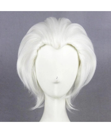 Fate Stay Night Shirou Emiya Archer Cosplay Hair Wig