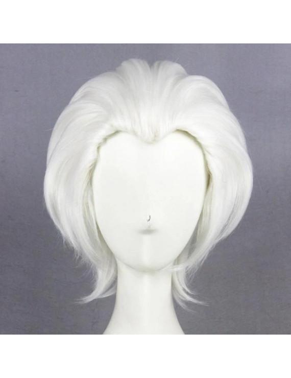 Fate Stay Night Shirou Emiya Archer Cosplay Hair Wig