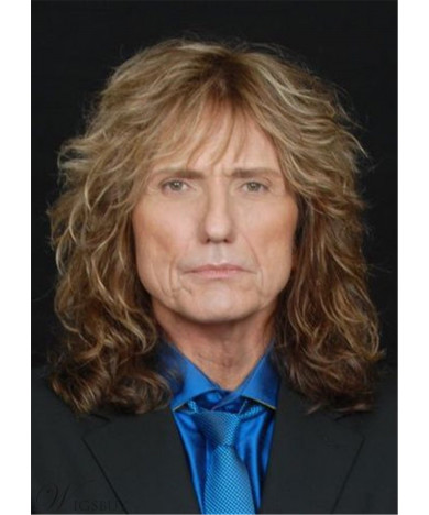 David Coverdale Hairstyle Synthetic Wavy Hair roleplay Wig for Men