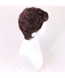 Tangled Flynn Rider Brown styled  Cosplay Wig 28 cm