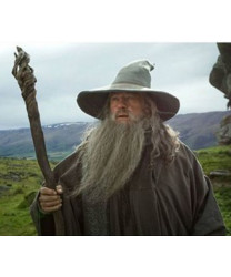 Harry Potter Albus Percival Wulfric Brian Dumbledore Cosplay Wig