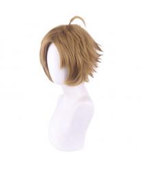 Jobless Reincarnation Mushoku Tensei Sylphiette Greyrat Cosplay Wig